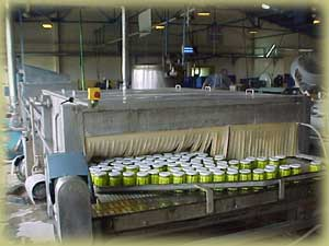 Pasteurization In